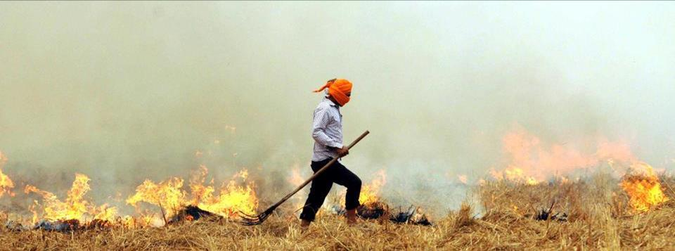 Punjab govt to provide 28000 agro-machines to farmers to prevent stubble