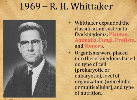 Whittaker(व हहट कर) proposed five kingdom classification : 1.